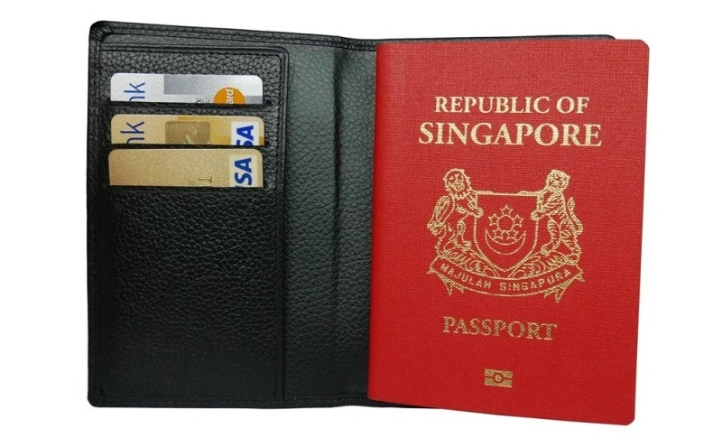 Cow Soft Milled Leather Passport Holder